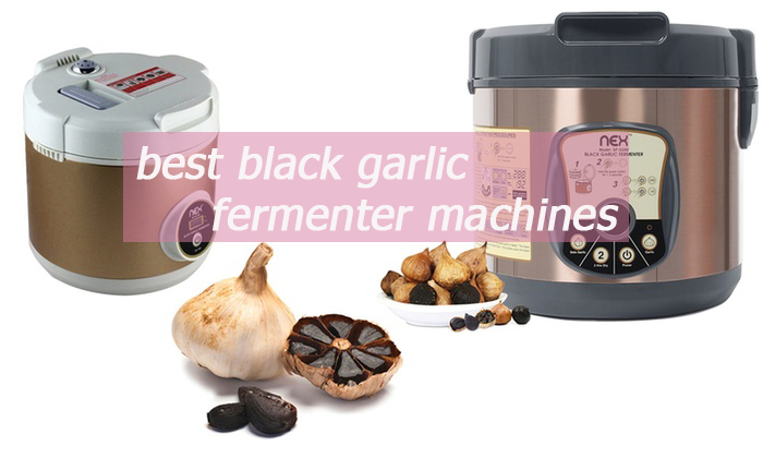 best black garlic fermenter machines