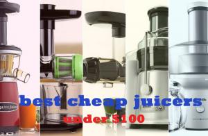 best cheap juicers under $100