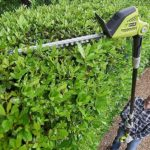 Top 7 Best Cordless Pole Hedge Trimmers Reviews