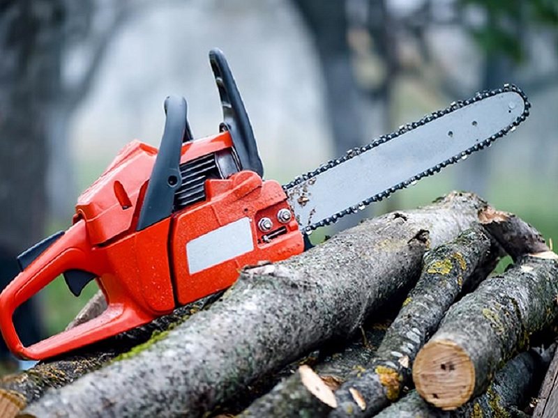 Top 7 Best Battery Powered Chainsaws Reviews 2019 Best7reviews