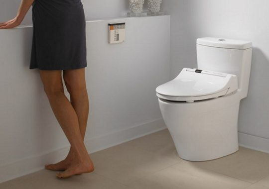Top 7 Best One-Piece Toilets And Reviews In 2019