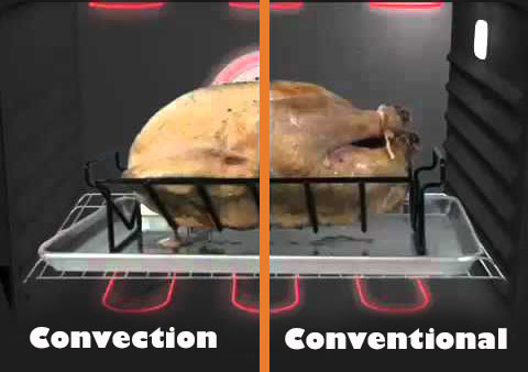 difference between convection and a regular oven