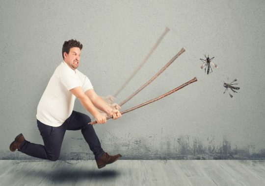 Top 7 Best Indoor Mosquito Traps Reviews