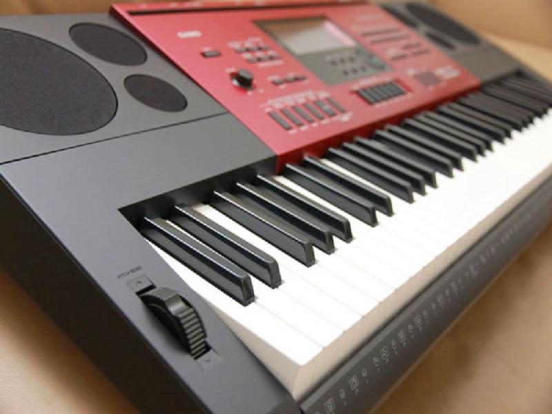 Best Casio Organ For Beginners
